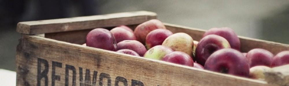 cropped-apples.jpg
