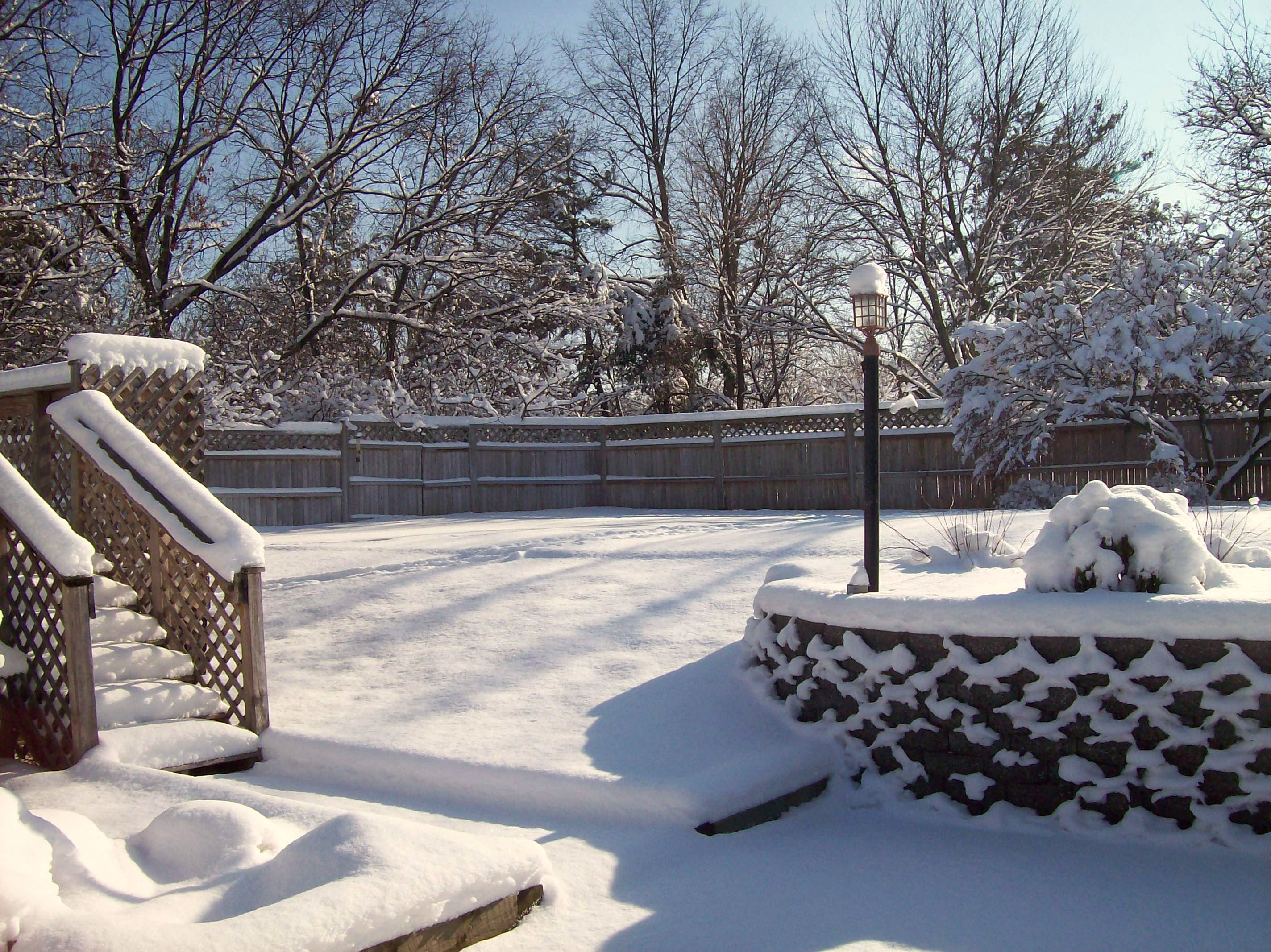 dollops of fresh snow; an emjayandthem photo