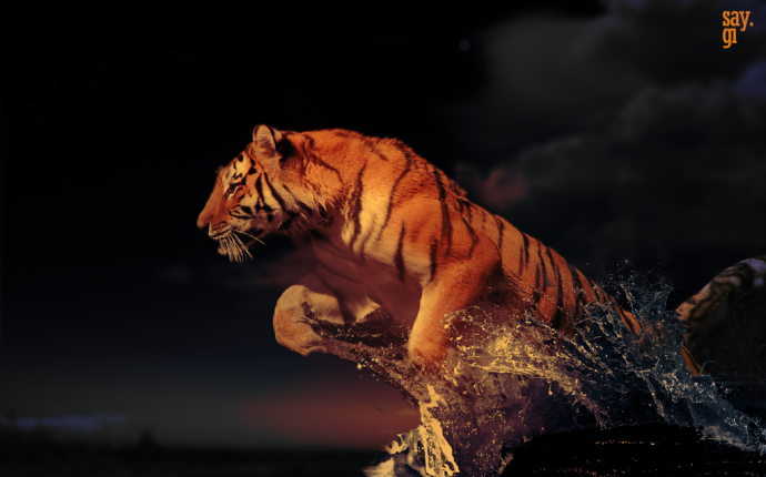 Yes! In the moment I felt like this Tigress.  Image from DeviantArt.com