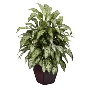 Yes we have some silk plants.  We also have a fake Christmas tree, too!
