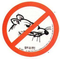 no more rats