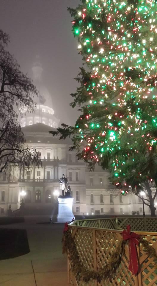 MI Capitol in fog