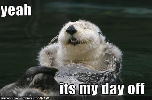 otter day off